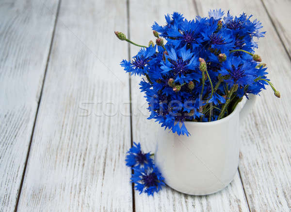 cornflowers in vase Stock photo © almaje