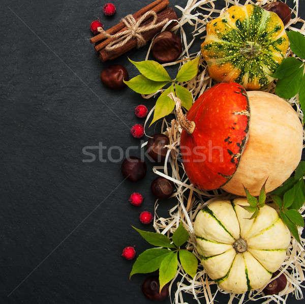 Zucche nero pietra natura foglia Foto d'archivio © almaje