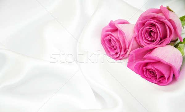 Rose bianco seta rosa fiore fiori Foto d'archivio © almaje