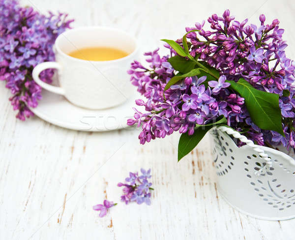 Cup of tea and lilac flowers Stock photo © almaje