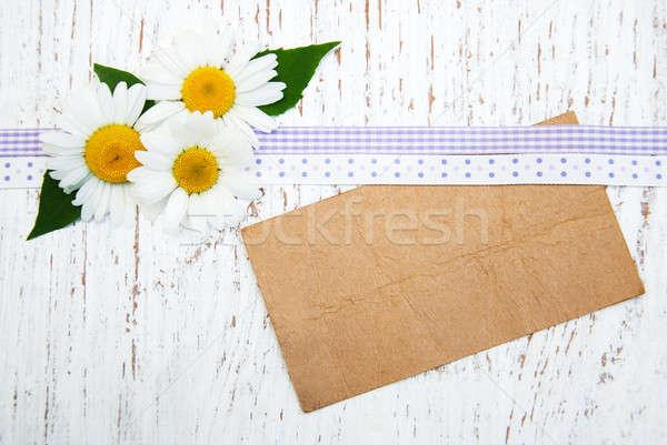 Rumianek kwiaty tag vintage kwiat Zdjęcia stock © almaje