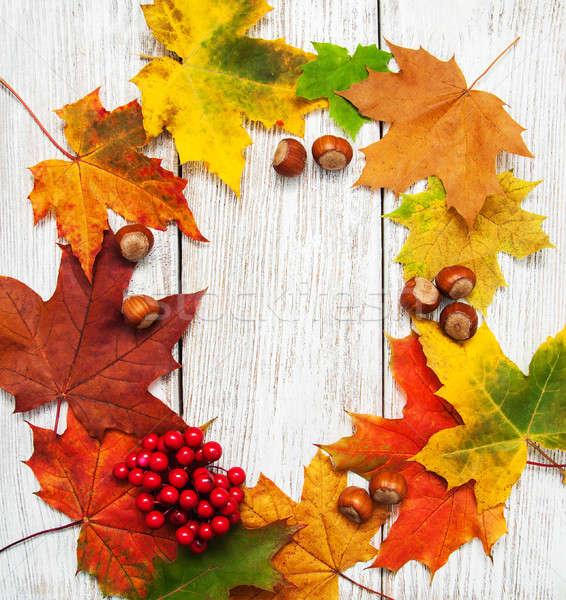 Colorful autumn leaves and hazelnuts Stock photo © almaje