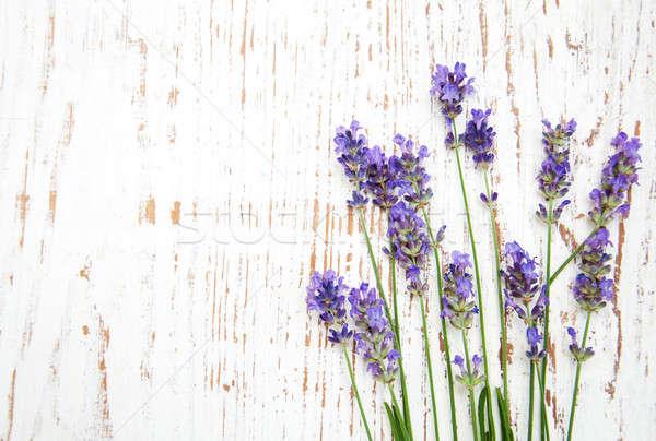 Lavendel bloemen oude houten bloem hout Stockfoto © almaje