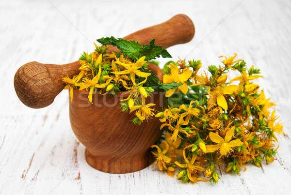 цветы древесины здоровья красоту ухода терапии Сток-фото © almaje