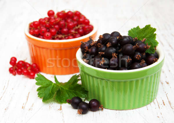 black currant and red currant Stock photo © almaje