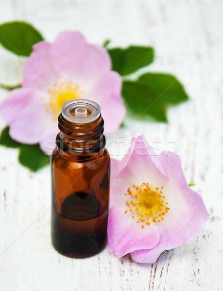 Vidro garrafa cão rosa flores Foto stock © almaje
