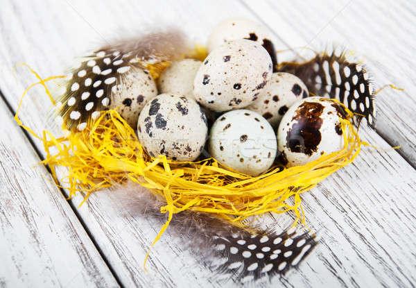 quail eggs in nest Stock photo © almaje