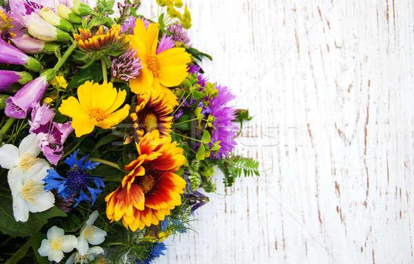 Flores silvestres velho flores natureza folha Foto stock © almaje