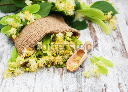 linden flowers in canvas bag Stock photo © almaje