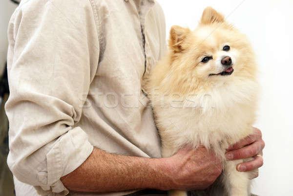 Family Pet Stock photo © AlphaBaby