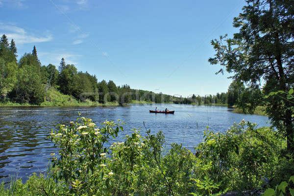красивой Онтарио сцена лесу Канада воды Сток-фото © AlphaBaby