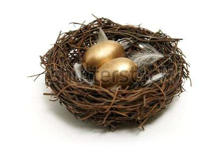 Nest Egg Strategy Stock photo © AlphaBaby