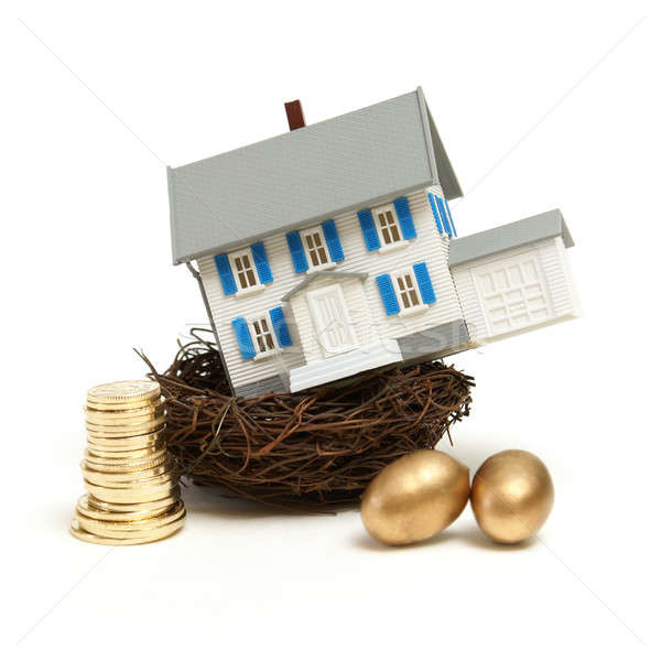 House In a Nest Stock photo © AlphaBaby