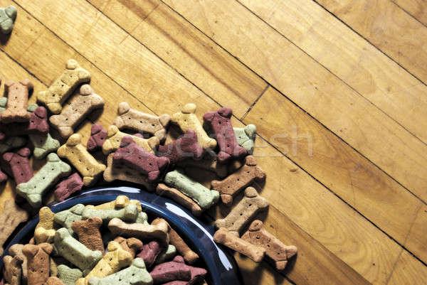 Kutya kekszek egészség vonat kék csoport Stock fotó © AlphaBaby