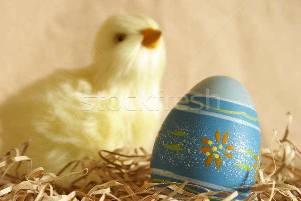 Húsvéti tojás csirke közelkép fókusz díszített elmosódott Stock fotó © AlphaBaby