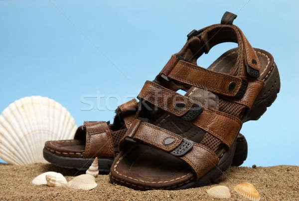 Leder sandalen modieus shot paar Stockfoto © AlphaBaby