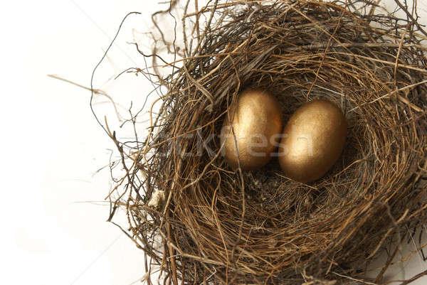 Emeklilik yuva yumurta bankacılık para ev Stok fotoğraf © AlphaBaby