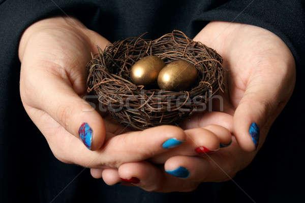 Sicher Vermögenswerte Bild Bedeutung Zukunft Business Stock foto © AlphaBaby