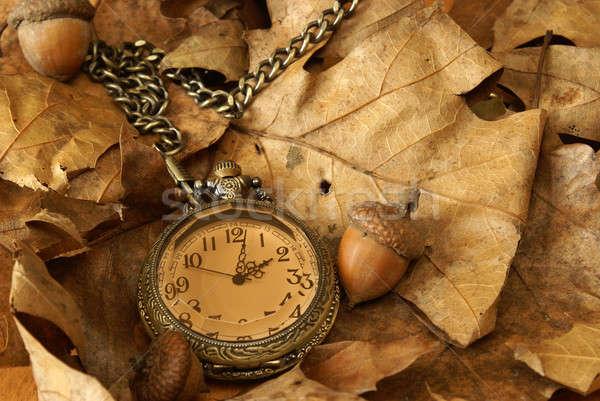 Autumn Time Stock photo © AlphaBaby