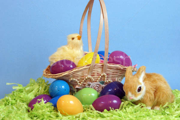 Easter Time Stock photo © AlphaBaby