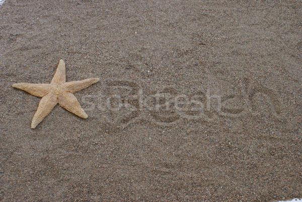 Plaj kumlu denizyıldızı arka plan yaz Stok fotoğraf © AlphaBaby