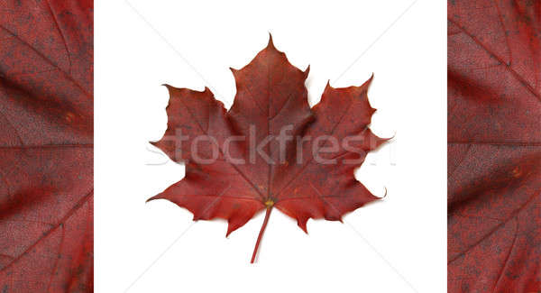 Canadian Flag Stock photo © AlphaBaby