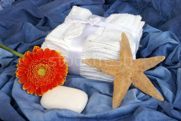 Czystość dobre kwiat niebieski Zdjęcia stock © AlphaBaby