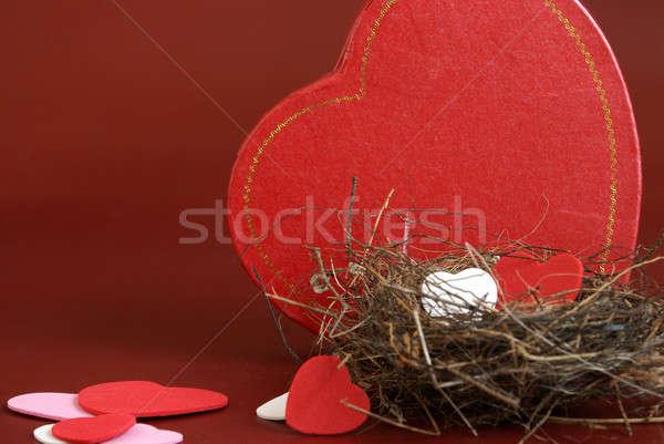 Nest of Love Stock photo © AlphaBaby