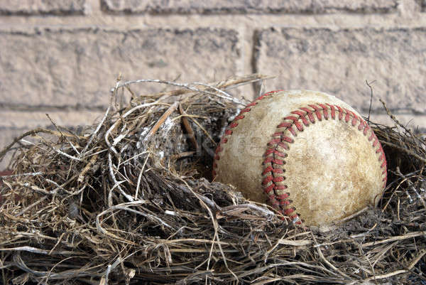 Miscellaneous Concept for Baseball Stock photo © AlphaBaby