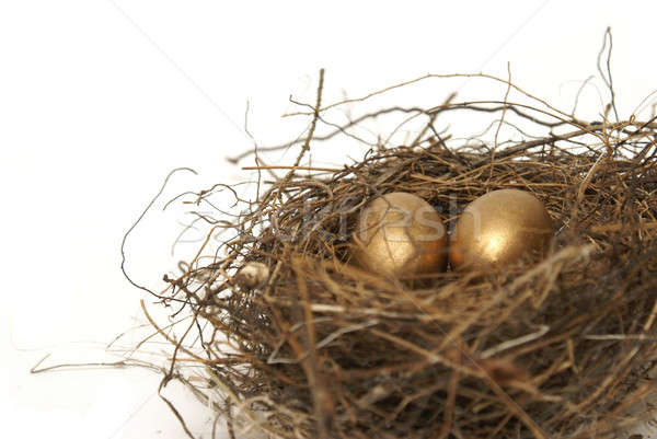 Retirement Nest Egg Stock photo © AlphaBaby