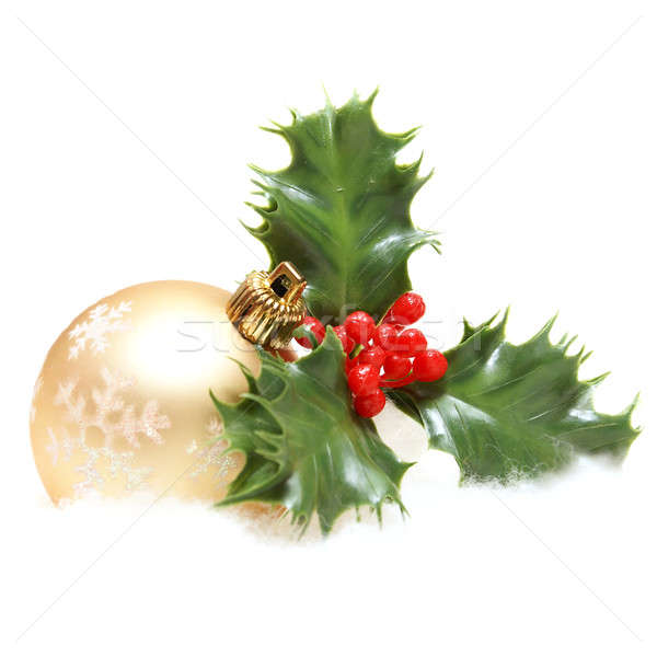 Christmas Decor and Holly Stock photo © AlphaBaby