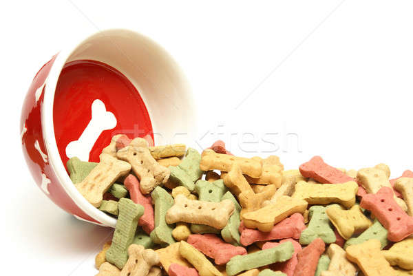 Ovreflowing Dog Treats Stock photo © AlphaBaby