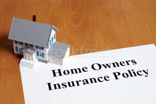 Otthonbiztosítás biztosítás irányvonal nyereség otthon tulajdonos Stock fotó © AlphaBaby
