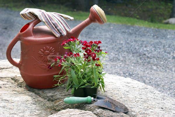 Tuinieren stilleven weinig tools bloemen water Stockfoto © AlphaBaby