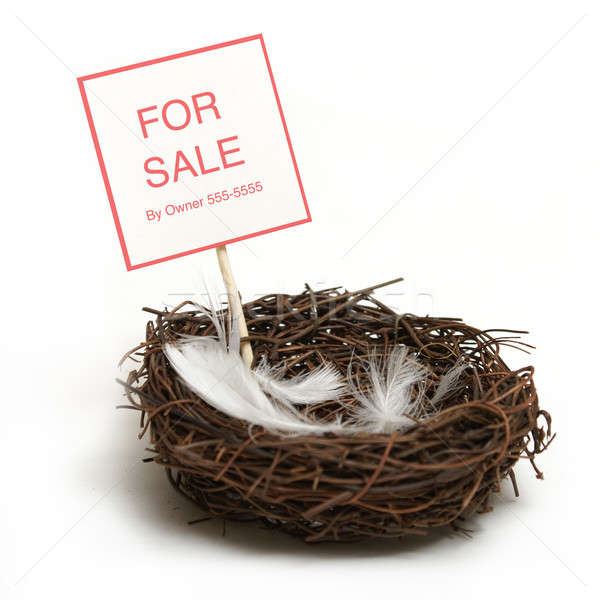 Property for Sale Stock photo © AlphaBaby