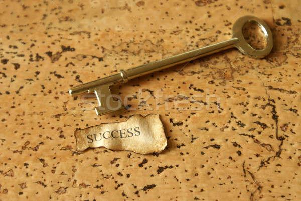 Sleutel succes afbeelding business papier metaal Stockfoto © AlphaBaby