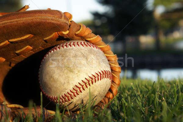 Honkbalhandschoen leggen gras oude zon veld Stockfoto © AlphaBaby