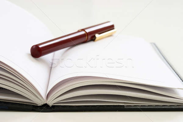 Pen and Journal Stock photo © AlphaBaby