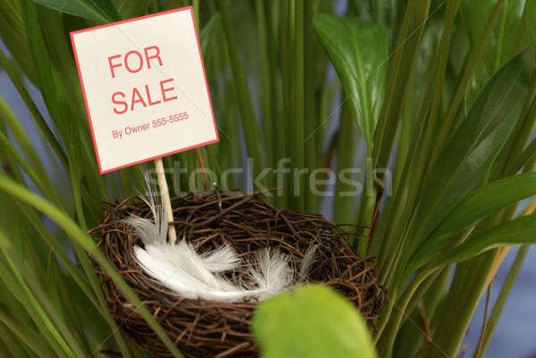 собственности продажи кусок дома домой лет Сток-фото © AlphaBaby