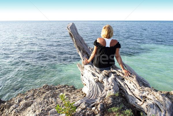 Overlooking the Ocean Stock photo © AlphaBaby