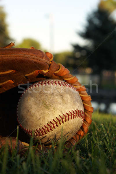 Old Baseball In a Mitt Stock photo © AlphaBaby