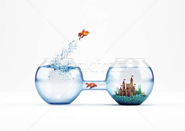 Façon amélioration progrès 3D Goldfish Photo stock © alphaspirit