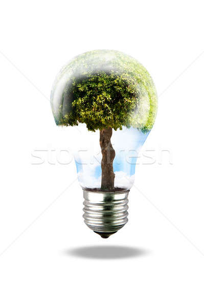 Groene energie lamp boom business technologie groene Stockfoto © alphaspirit