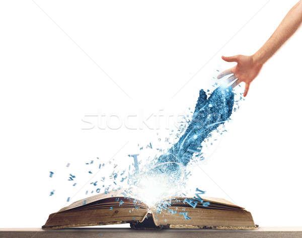 Freund Buch hellen Hand heraus Stock foto © alphaspirit