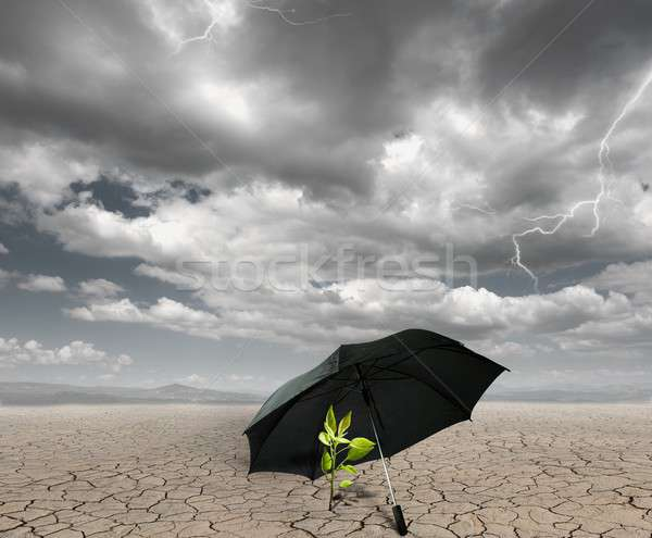 Save and protect nature Stock photo © alphaspirit