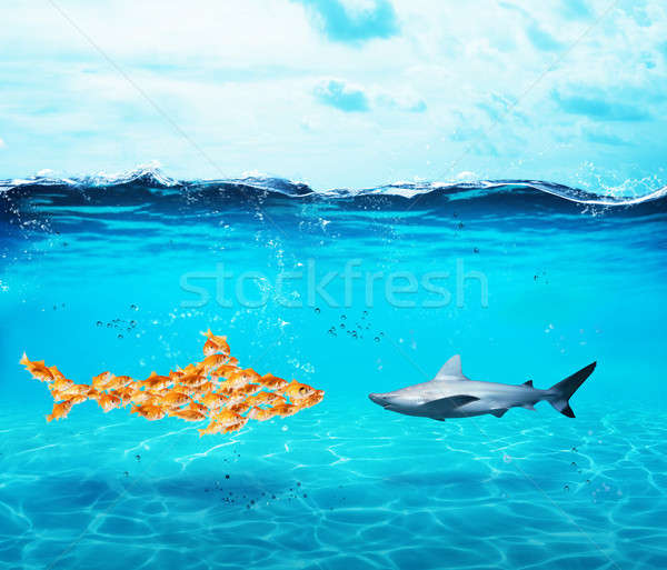 Big shark made of goldfishes. Concept of unity is strenght,teamwork and partnership Stock photo © alphaspirit