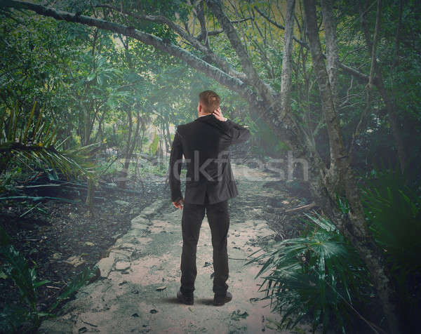 Verloren bos verward man business weg Stockfoto © alphaspirit