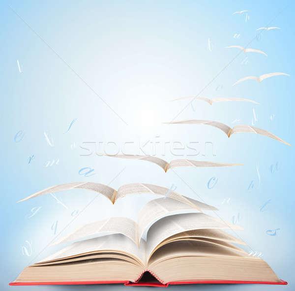 магия книга лет фантазий чтение школы Сток-фото © alphaspirit