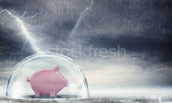 Protect gains from the crisis Stock photo © alphaspirit