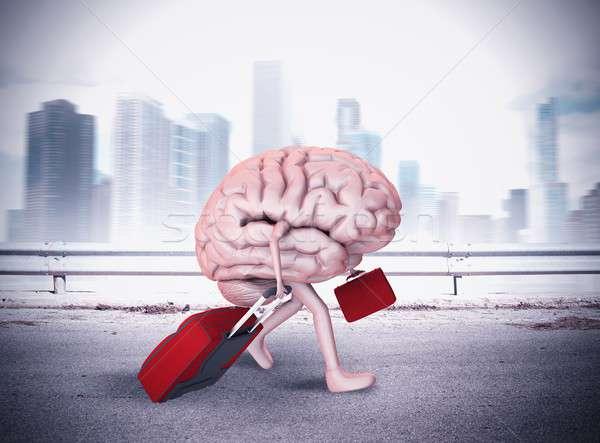 Ontsnappen hersenen benen lopen twee bagage Stockfoto © alphaspirit